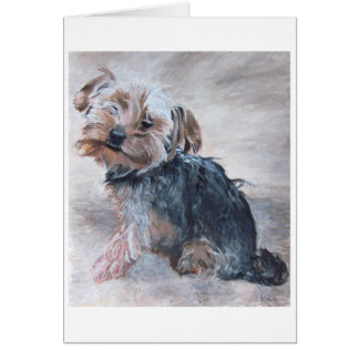 Yorkshire Terrier, peignant par Kate Marr, carte