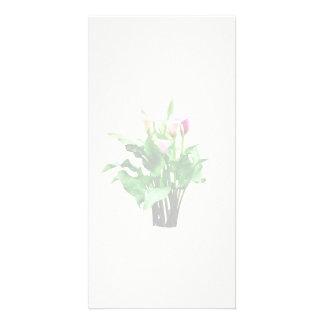 Zantedeschias roses et blancs cartes avec photo