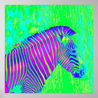 zèbre au néon - rétro de vert, bleu et pourpre affiche