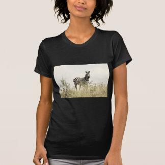 Zèbre dans la nature t-shirt