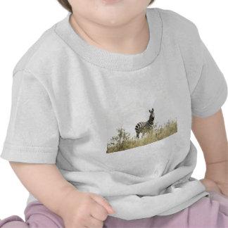Zèbre dans la nature t-shirts