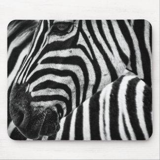 tapis de souris z bre personnalis s. Black Bedroom Furniture Sets. Home Design Ideas