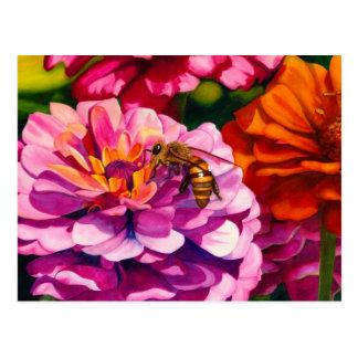 Zinnias avec l'abeille de travailleur cartes postales