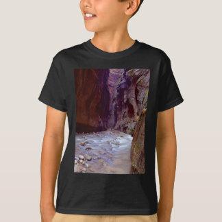 Zion rétrécit le randonnée par la rivière dans le t-shirt