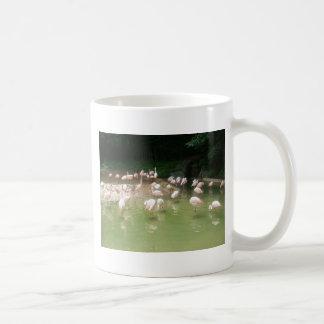 zoo 008 mug blanc