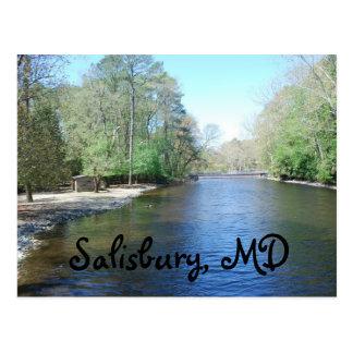 Zoo de Salisbury, DM Carte Postale
