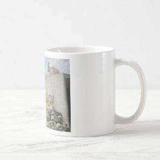 zoo tasse à café